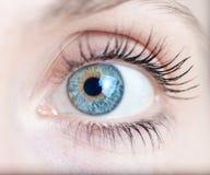 Tiro macro do olho de uma mulher Foto de Stock Royalty Free