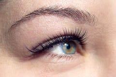 Tiro macro do olho fêmea com as pestanas longas extremas fotos de stock royalty free
