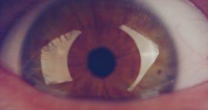 Tiro macro extremo de un ojo humano marrón almacen de metraje de vídeo