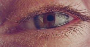 Tiro macro extremo de un ojo humano marrón almacen de video