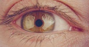 Tiro macro extremo de un ojo humano marrón metrajes