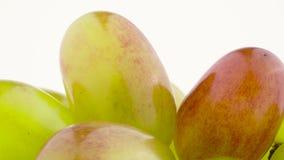 Tiro macro Grupo das uvas brancas Lentamente girando na plataforma giratória isolada no fundo branco filme