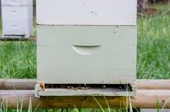 Tiro medio de la caja de la apicultura Imágenes de archivo libres de regalías