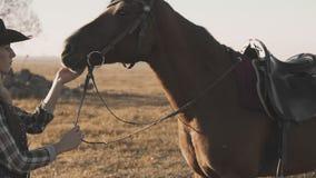 Tiro medio de la mujer joven hermosa con su caballo oscuro que disfruta de la naturaleza almacen de metraje de vídeo