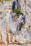 Tiro natural de la pared texturizada piedra de la roca Imagenes de archivo