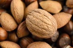 Tiro Nuts mezclado desde arriba Imagen de archivo libre de regalías