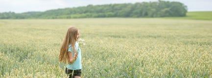 Tiro panorámico de una muchacha en un campo Fotografía de archivo libre de regalías