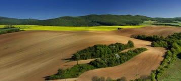 Tiro panoramatic da mola bonita com um prado Foto de Stock Royalty Free
