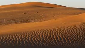 Tiro pintoresco de las dunas de arena rojas en la puesta del sol metrajes