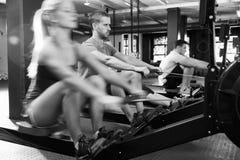 Tiro preto e branco da classe do Gym que usa máquinas de enfileiramento foto de stock royalty free