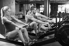Tiro preto e branco da classe do Gym que usa máquinas de enfileiramento imagens de stock royalty free