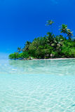 Tiro rachado do console tropical Imagem de Stock Royalty Free
