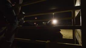 Tiro silueteado de un toro y de un jinete del toro almacen de metraje de vídeo