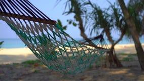Tiro Slowmotion de uma rede em uma praia tropical video estoque