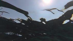 Tiro subacuático de la cámara lenta de un sol con las pequeñas ondas metrajes