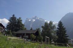 Tiro surpreendente da montanha dos cumes com árvores e da grama em torno do ov Foto de Stock Royalty Free