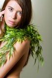 Tiro triguenho novo da beleza da mulher Foto de Stock Royalty Free