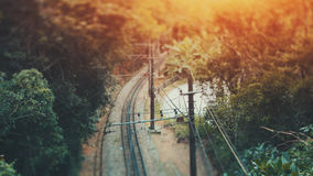 Tiro verdadeiro do deslocamento da inclinação da estrada de ferro na selva Fotografia de Stock Royalty Free