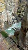 Tiro vertical da flora da água do mar, do penhasco e do mar imagem de stock