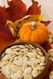 Tiro vertical de los gérmenes de calabaza y de los colores del otoño Fotos de archivo