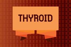 Tiroide da escrita do texto da escrita A glândula do significado do conceito no pescoço segrega as hormonas que regulam o crescim ilustração stock