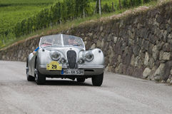 Tirol sul cars_2014_Jaguar clássico XK 120 Roadster_1 Imagem de Stock Royalty Free