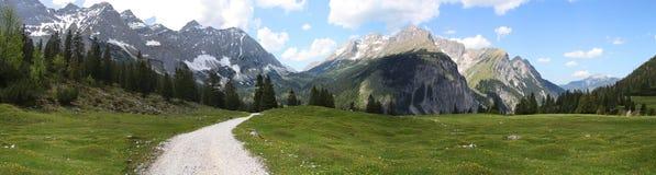 Tirolermountain meadow Stock Photography