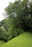 Tirolian alps Royalty Free Stock Images