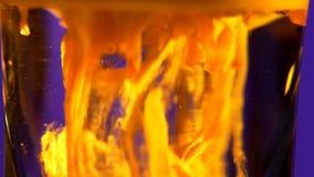 Tiros coloridos do coctail, macro, movimento lento filme