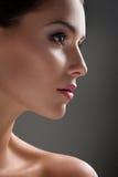 Tiros da beleza do estúdio de uma jovem mulher com pele sem falhas Foto de Stock Royalty Free
