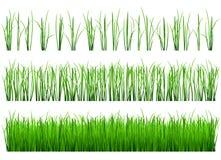 Tiros da grama verde Fotografia de Stock Royalty Free