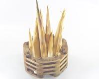 Tiros de bambu Imagem de Stock