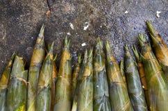 Tiros de bambu no concreto Fotos de Stock