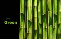 Tiros de bambu no preto Fotografia de Stock Royalty Free