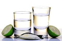 Tiros do Tequila Fotos de Stock