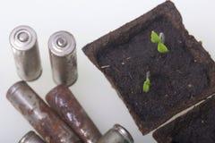 Tiros verdes novos dos brotos em uns recipientes da turfa São cercados pelas baterias gastadas, revestidas com a corrosão ambient fotografia de stock