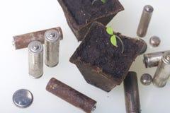 Tiros verdes novos dos brotos em uns recipientes da turfa São cercados pelas baterias gastadas, revestidas com a corrosão ambient imagens de stock royalty free