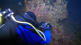 Tiroteo único del underwter de los buceadores en hielo del mar blanco metrajes
