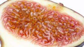 Tiroteo macro de la pulpa de la fruta del higo común Lentamente girando en la placa giratoria aislada en el fondo blanco almacen de video