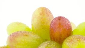 Tiroteo macro Manojo de uvas blancas con gotas del agua Lentamente girando en la placa giratoria aislada en el blanco almacen de video