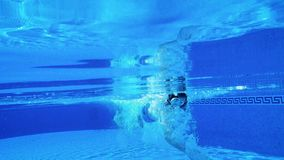 Tiroteo subacuático como nadadas de un hombre debajo del agua almacen de metraje de vídeo