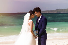 Tirs chinois de mariage de couples Photos stock