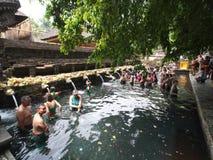 Tirta Empul świątynia, Bali Fotografia Stock