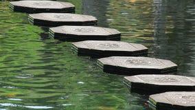 Tirta Gangga water steps stock video footage