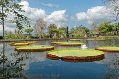 Tirtagangga Water Palace. Tirta Gangga literally means water from the Ganges and it is a site of some reverence for the Hindu Balinese. Strictly, the name refers Stock Photo