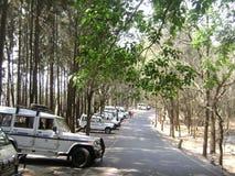 Tirupati wzgórza Świątynna stacja Fotografia Royalty Free
