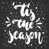 Tis la saison - vacances d'hiver de Noël tiré par la main et de nouvelle année marquant avec des lettres la citation Photos stock