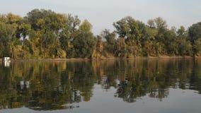 Tisa河在秋天 股票视频