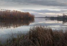 Tisa-Fluss an Herbstnovember-Nachmittag Lizenzfreies Stockbild