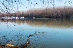 Tisa River i vinter Arkivfoto
